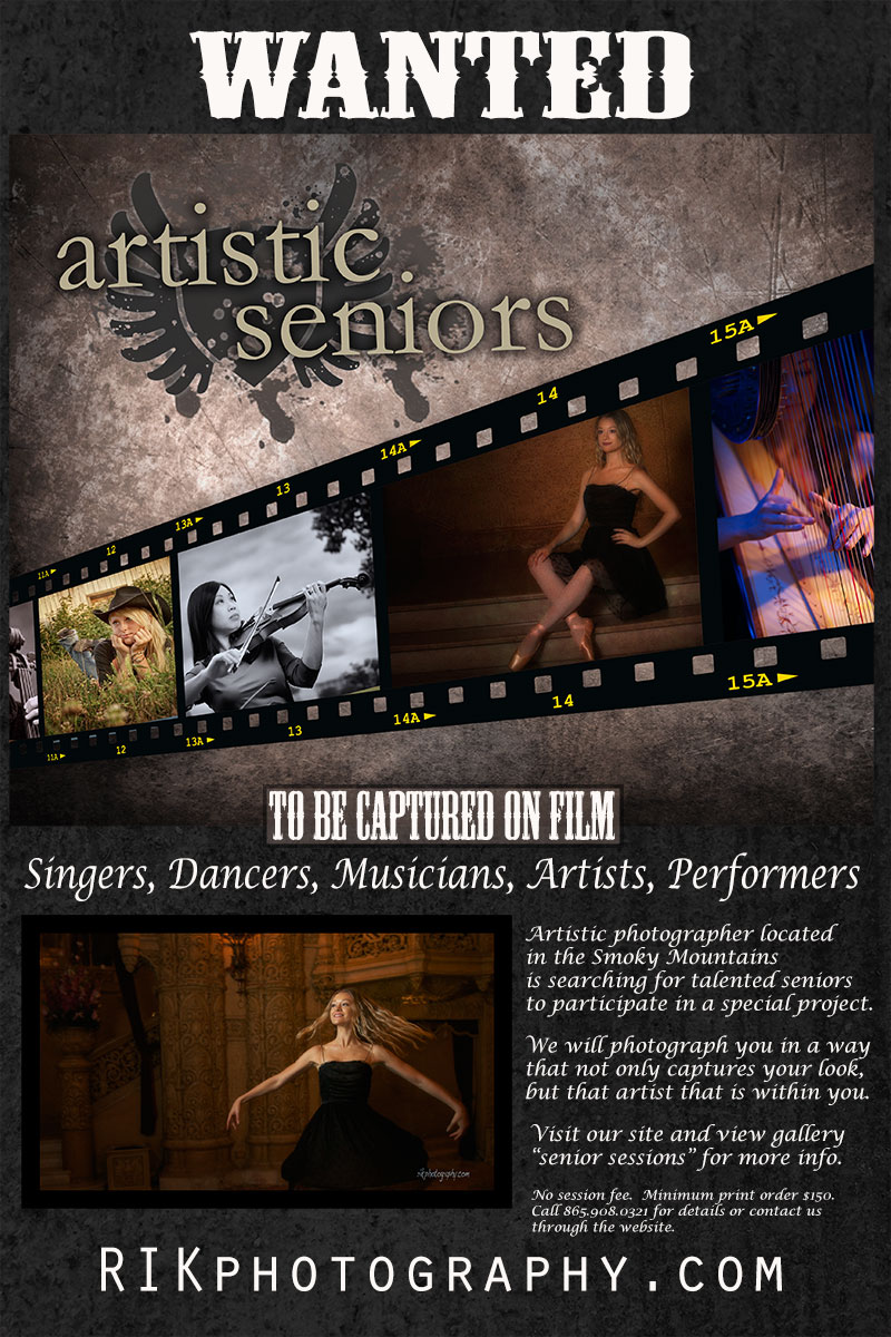 promotion for artistic seniors